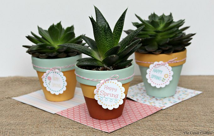 3-Mint-Mustard-Painted-Succulent-Pots-plus-FREE-Printable-Happy-Spring-Tags.jpg