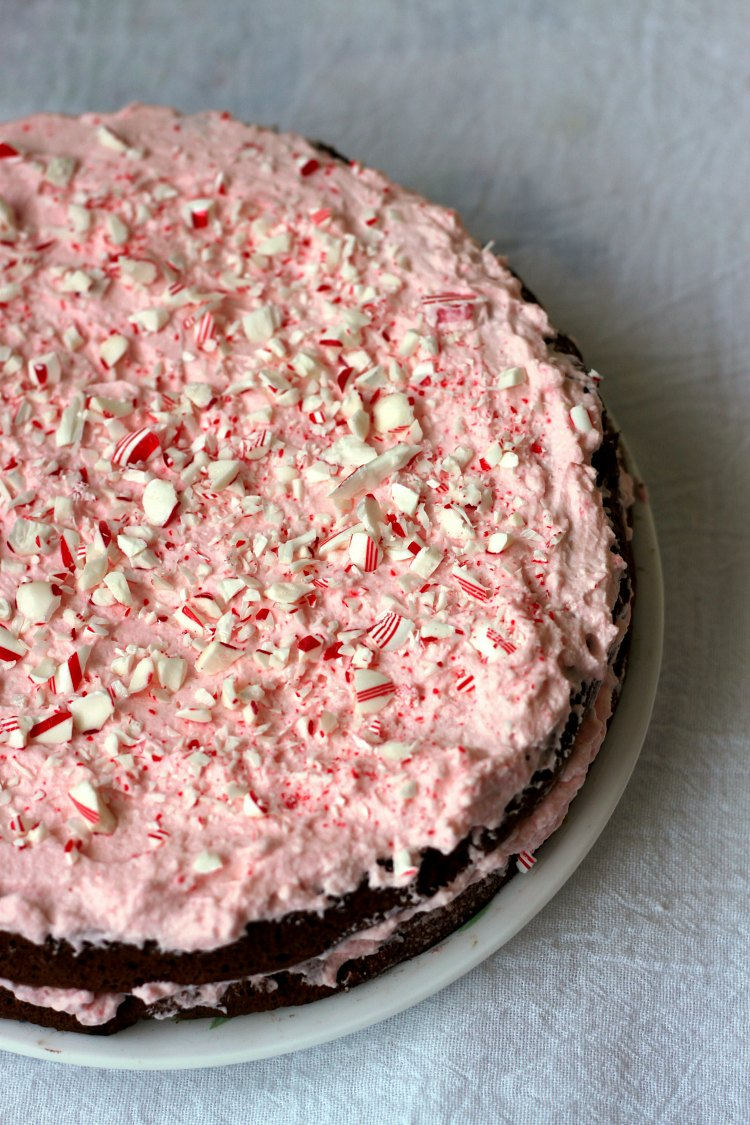 chocolate peppermint cake 20 delicious amp festive peppermint desserts for 2896